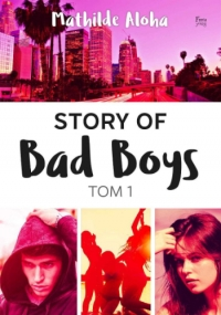 Pierwszy tom Story of Bad Boys!